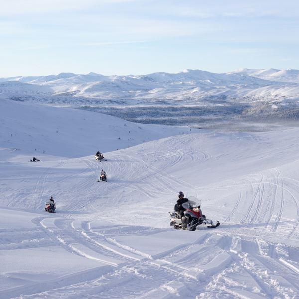 Snowmobile safari for everyone