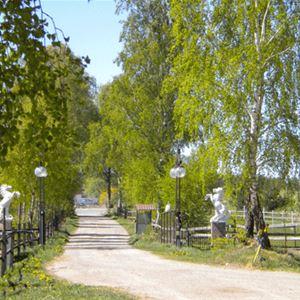 Wohnen auf dem Pferdehof - Rydbo Gestüt
