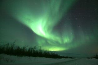 Reindeer Sledding, Sami culture and northern lights hunt