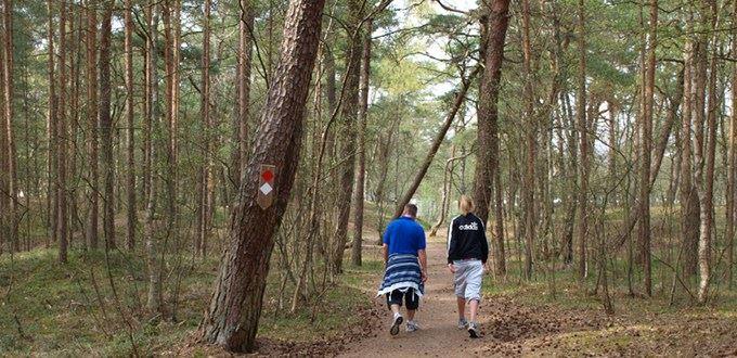 Fotograf: Lisbeth Holmåker (www.skanskalandskap.se), Kronoskogen - naturreservat