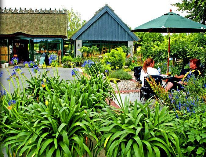 Annette Odelberg, Orelund Garden Cafe