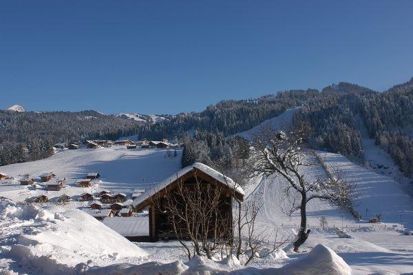 Leilighet for opp til 5 personer med 2 rom på Fleur des Alpes (Edelweiss) n°4 - Les Gets