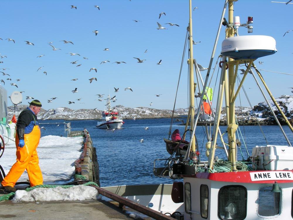 Skreifestivalen 2018: Båttur til Vandsøya fredag 16 mars
