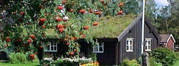 Villstad folk museum, Smålandsstenar