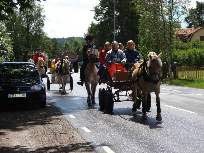 Häst- & Vagnturer
