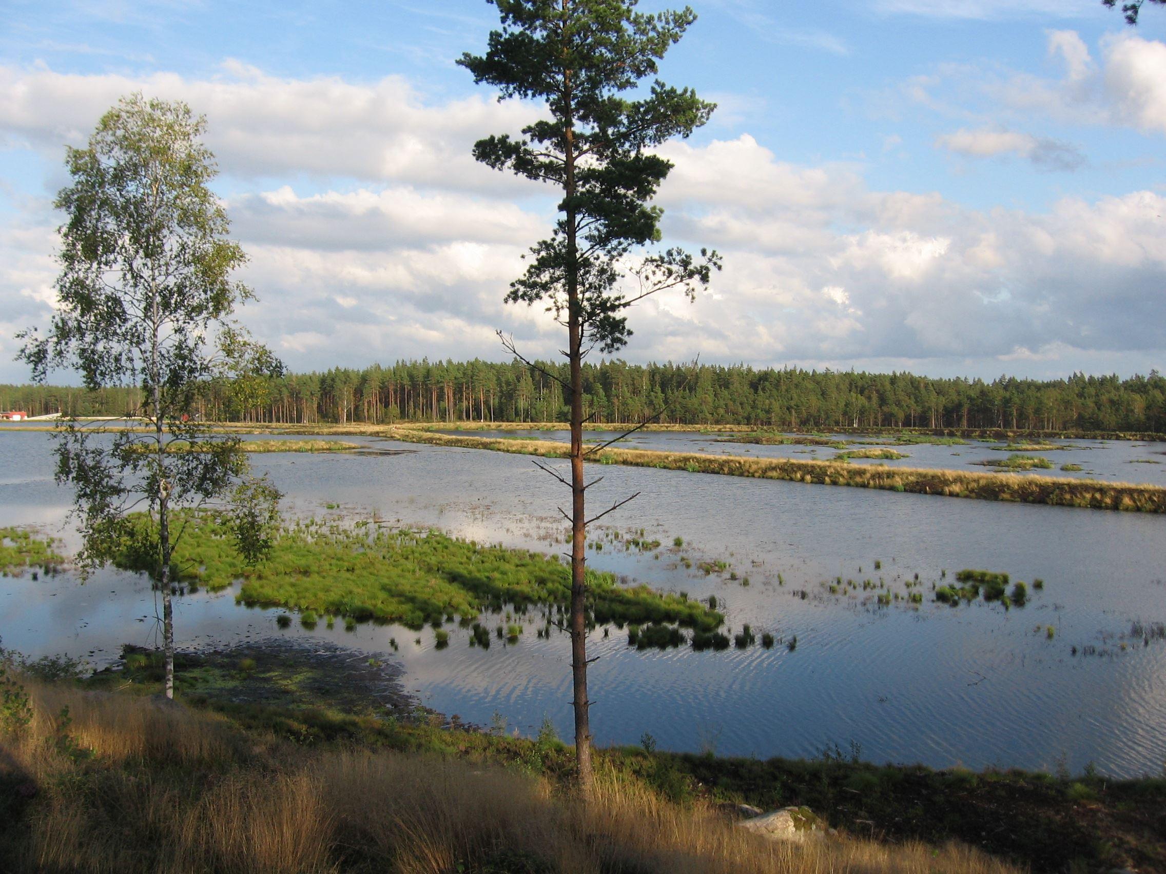 © Gislaveds kommun, Gislaveds våtmark