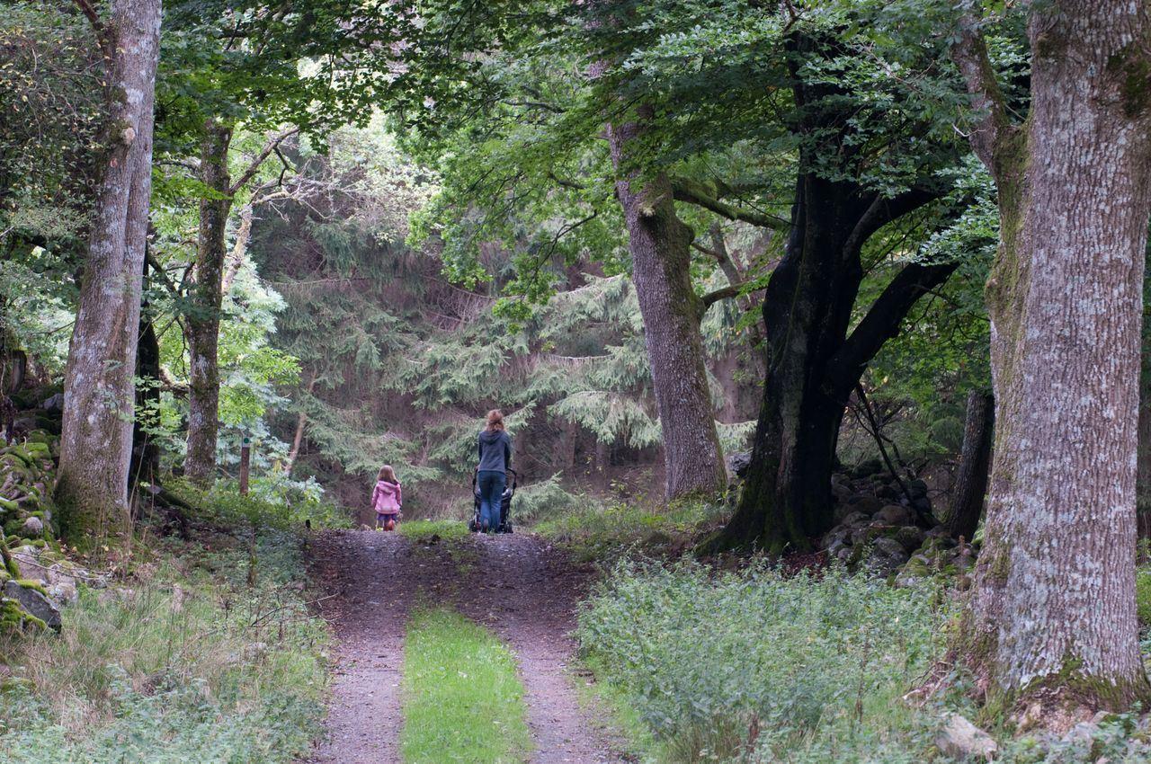 Christinehofs Ekopark - vandra på egen hand