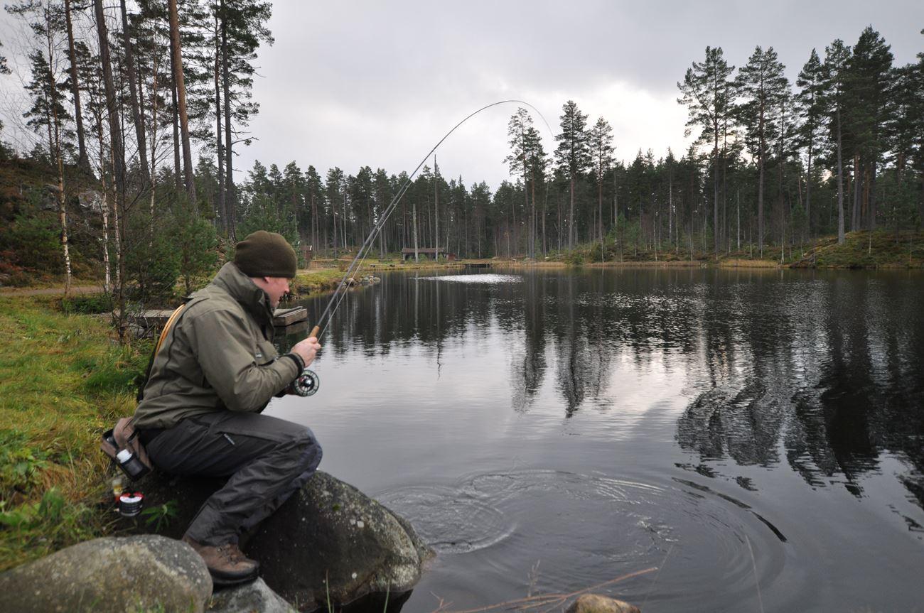© Smålandsfiskarna, Smålandsfiskarna
