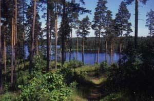 Drags Udde - Nature reserve