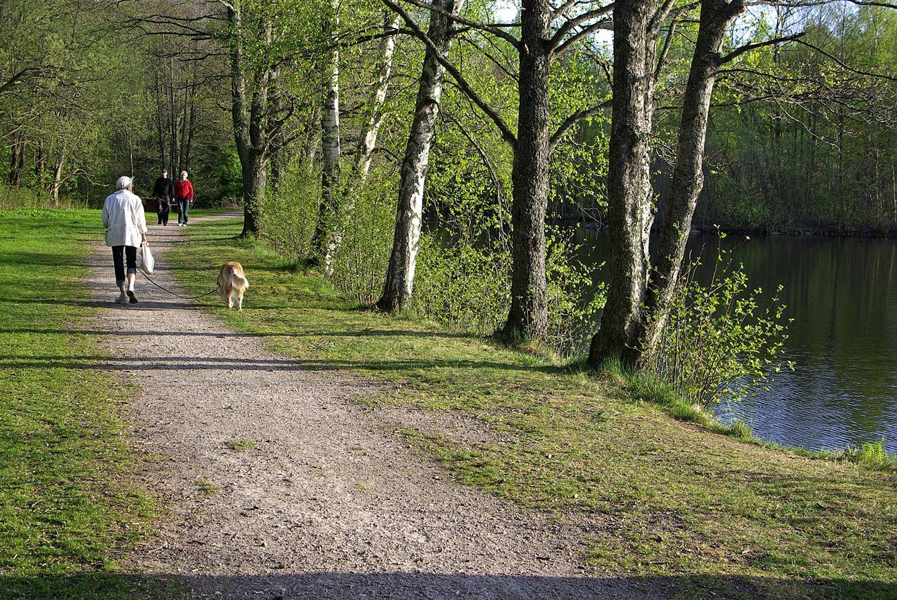 Illharjen - nature reserve