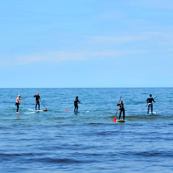 Rent Stand up paddleboard - half a day incl. paddle, wetsuite and life vest