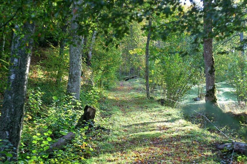 © Målaskogs Bygdeförening, Målaskogsberg