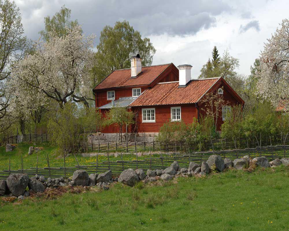 Djursdala - Södra Vi