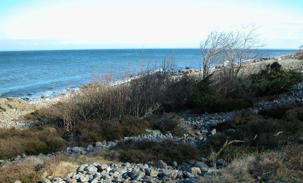 Kattviks strand