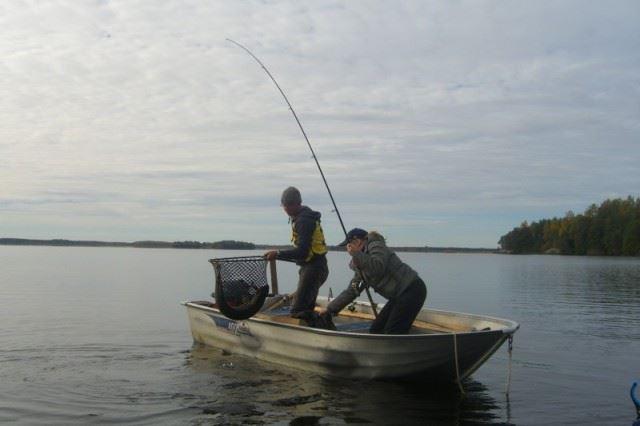 fiska