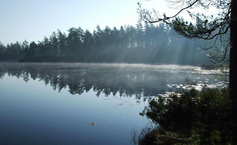 Discover Småland