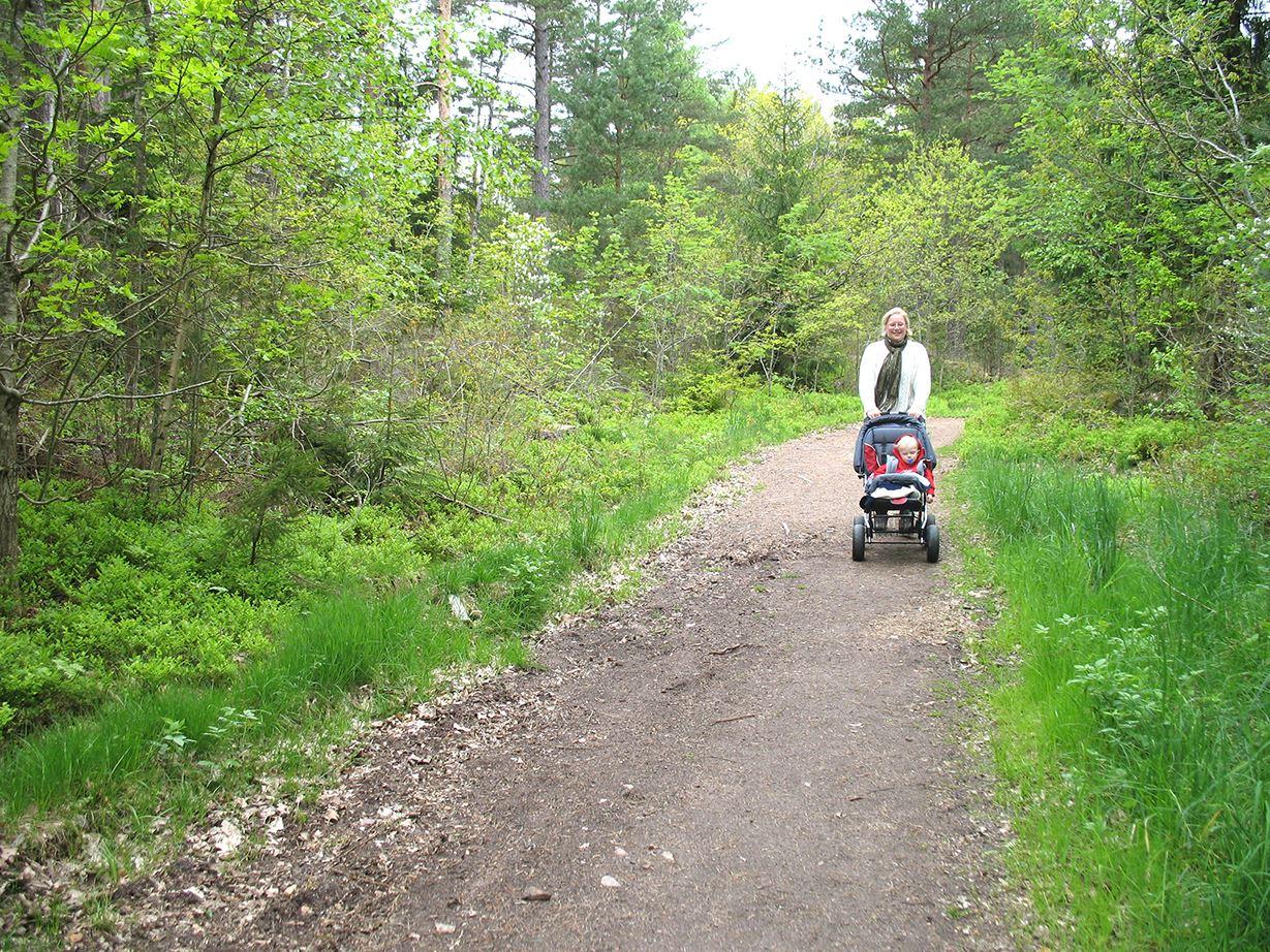 Kristineberg jogging trail