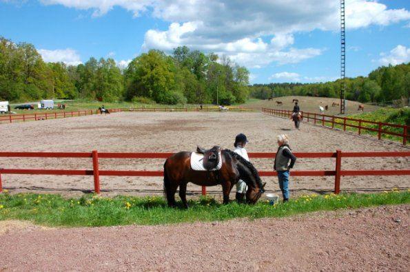 Oskarshamn Horse Riding School