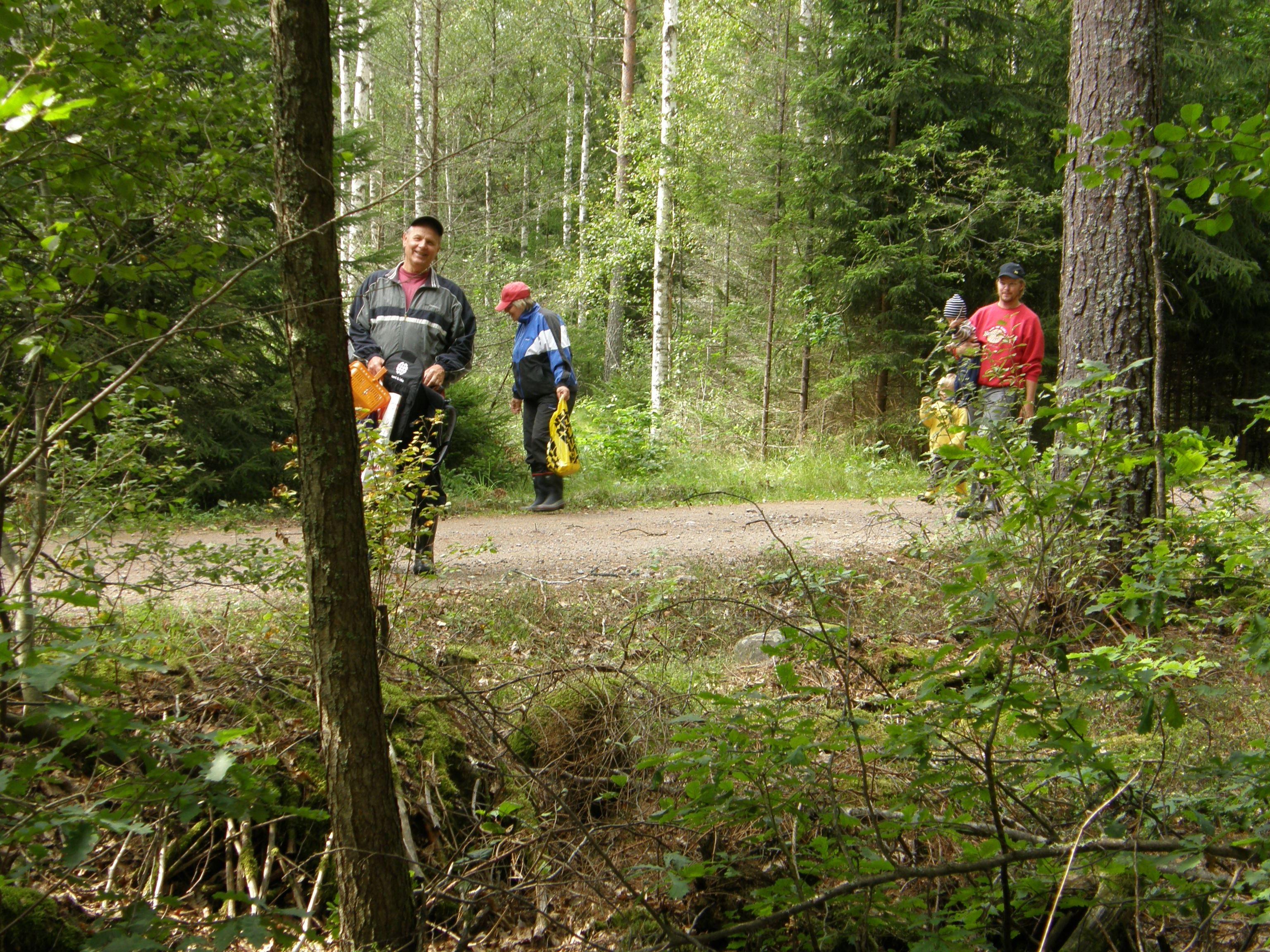 Misterhult jogging trail