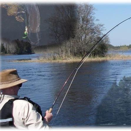 Gysingeforsarnas Fiskevårdsområde