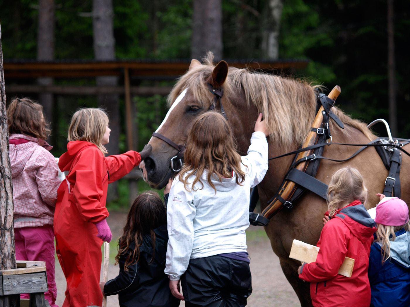 Barn som klappar hästen Berta i Hemlingby