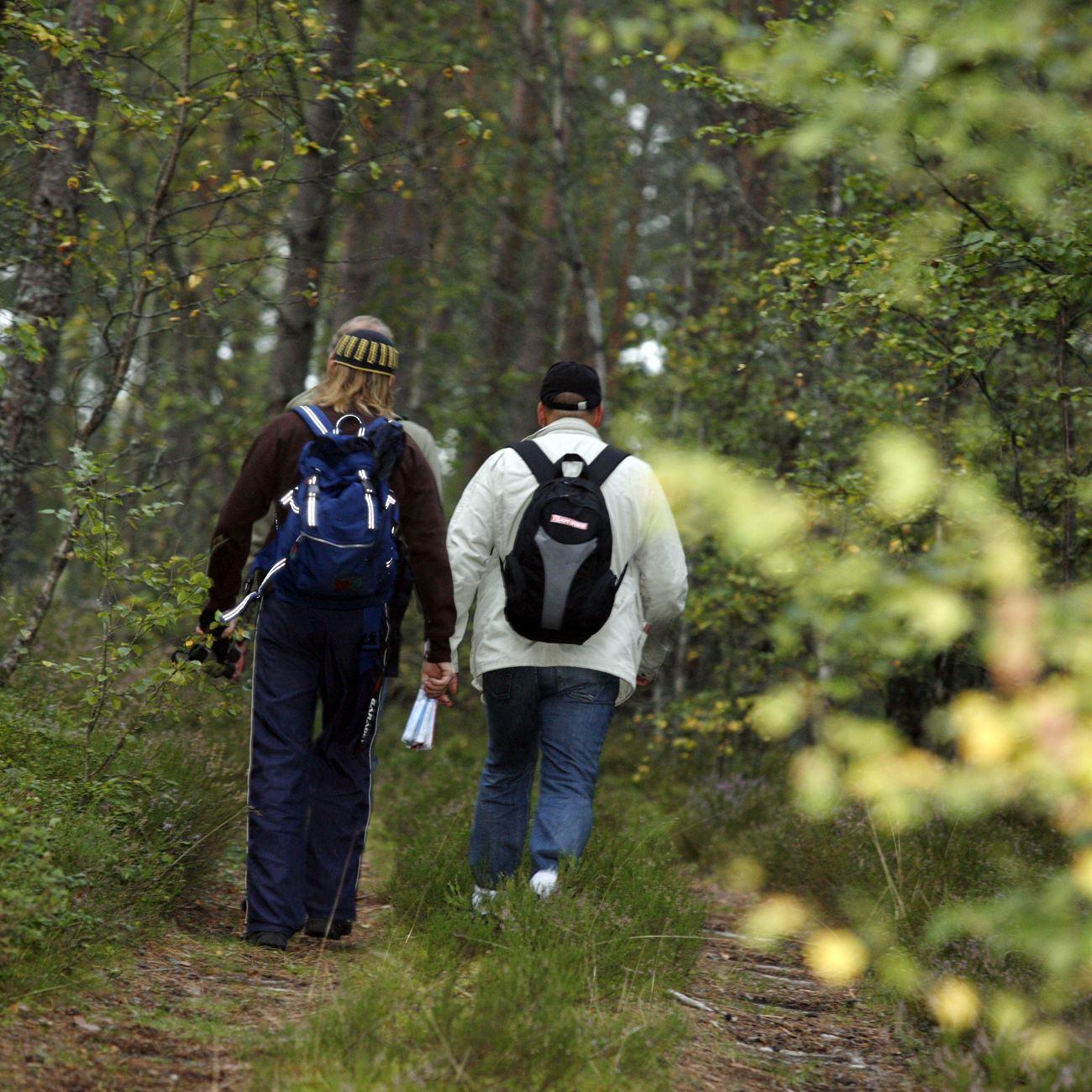 Smålandsbilder.se,  © Värnamo Näringsliv AB , Vandring längs de gamla Pilgrimslederna