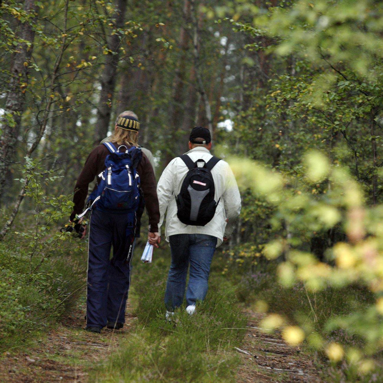 Smålandsbilder.se,  © Värnamo Näringsliv AB , Wandern Sie auf den alten Pilgerwegen