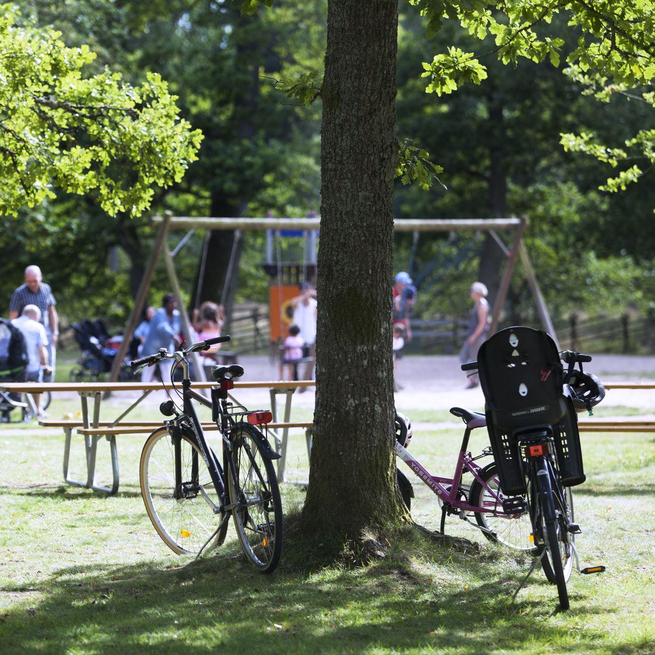 Foto: Smålandsbilder.se,  © Värnamo Näringsliv AB , Fahrradwege in Värnamo Gemeinde, 47-68 km