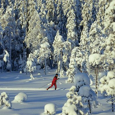 Cross-country skiing Trail card