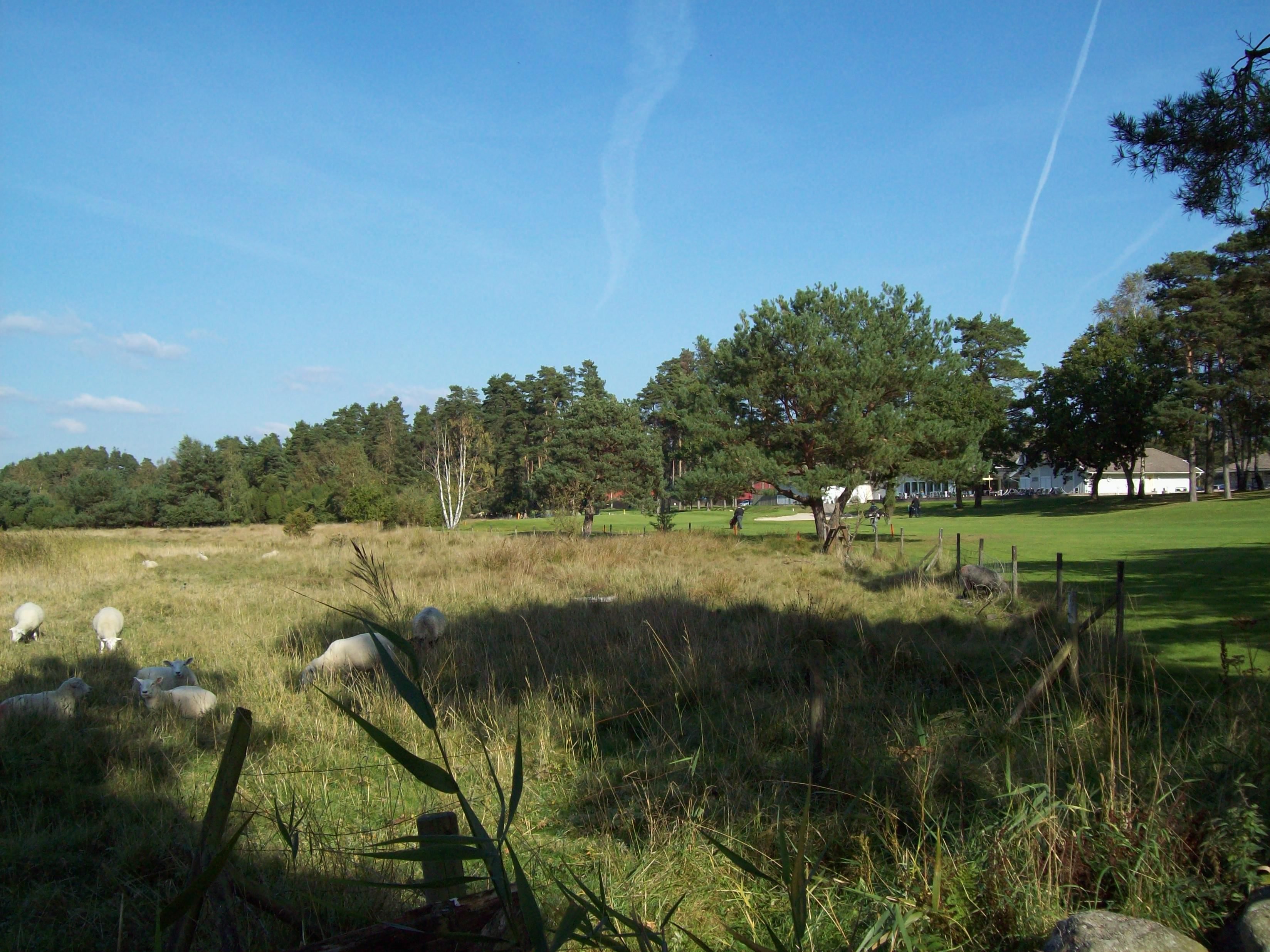 Sölvesborg Golf Club