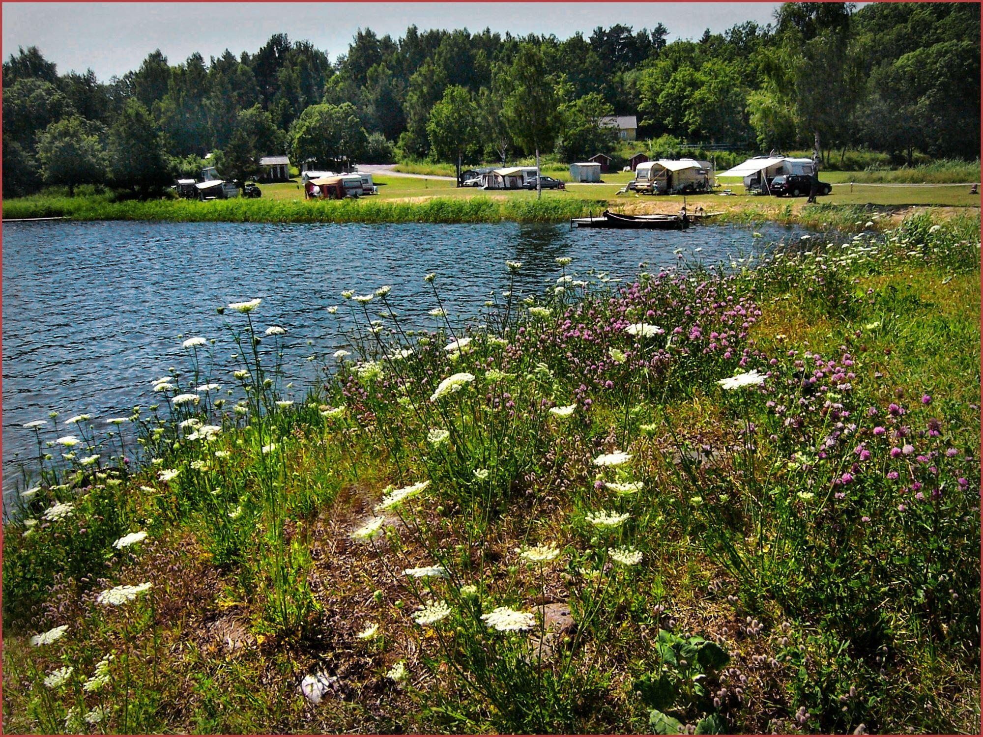 KustCamp Gamleby // Hammarsbadet / Campsite
