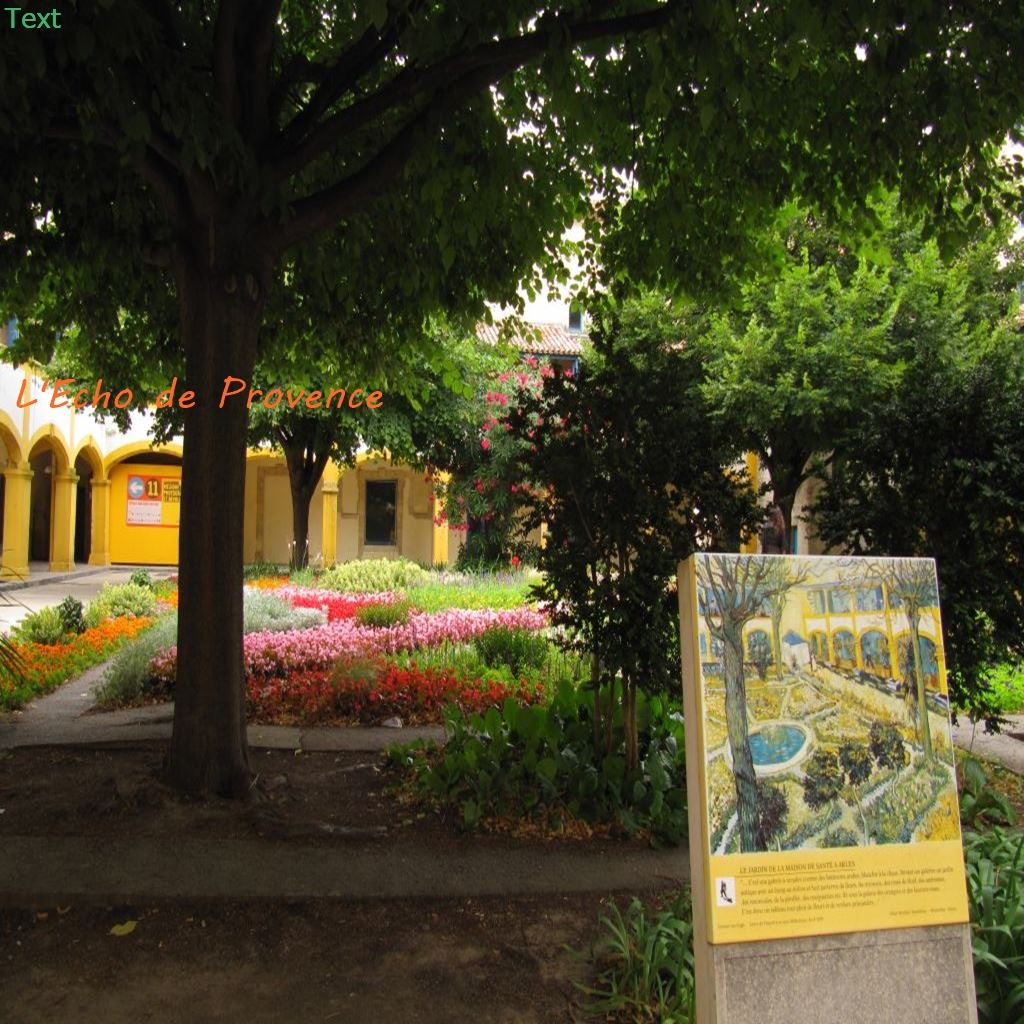 Van Gogh tour