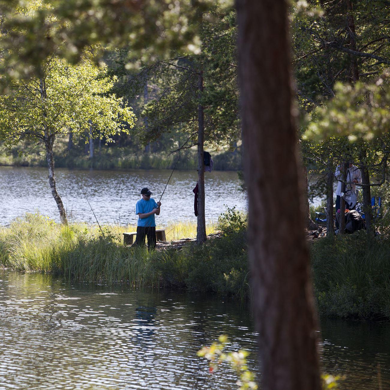 Angeln im See Älganässjön