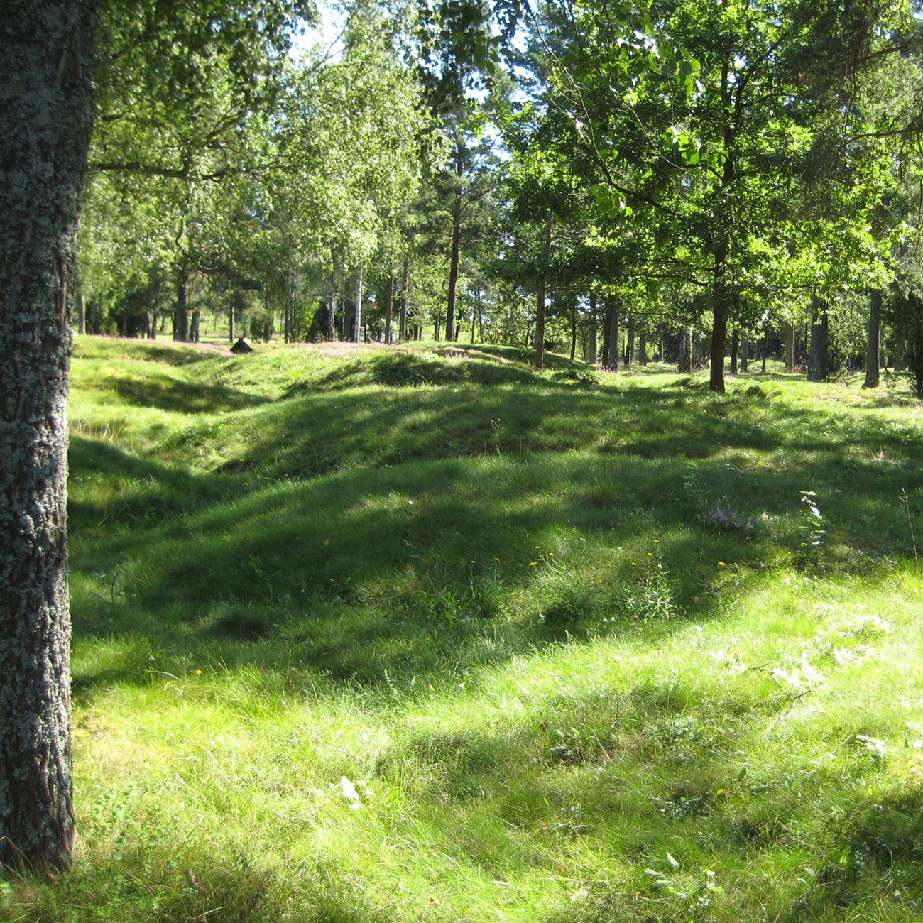 Max Wickman,  © Värnamo Näringsliv AB , Gravfält i Hånger
