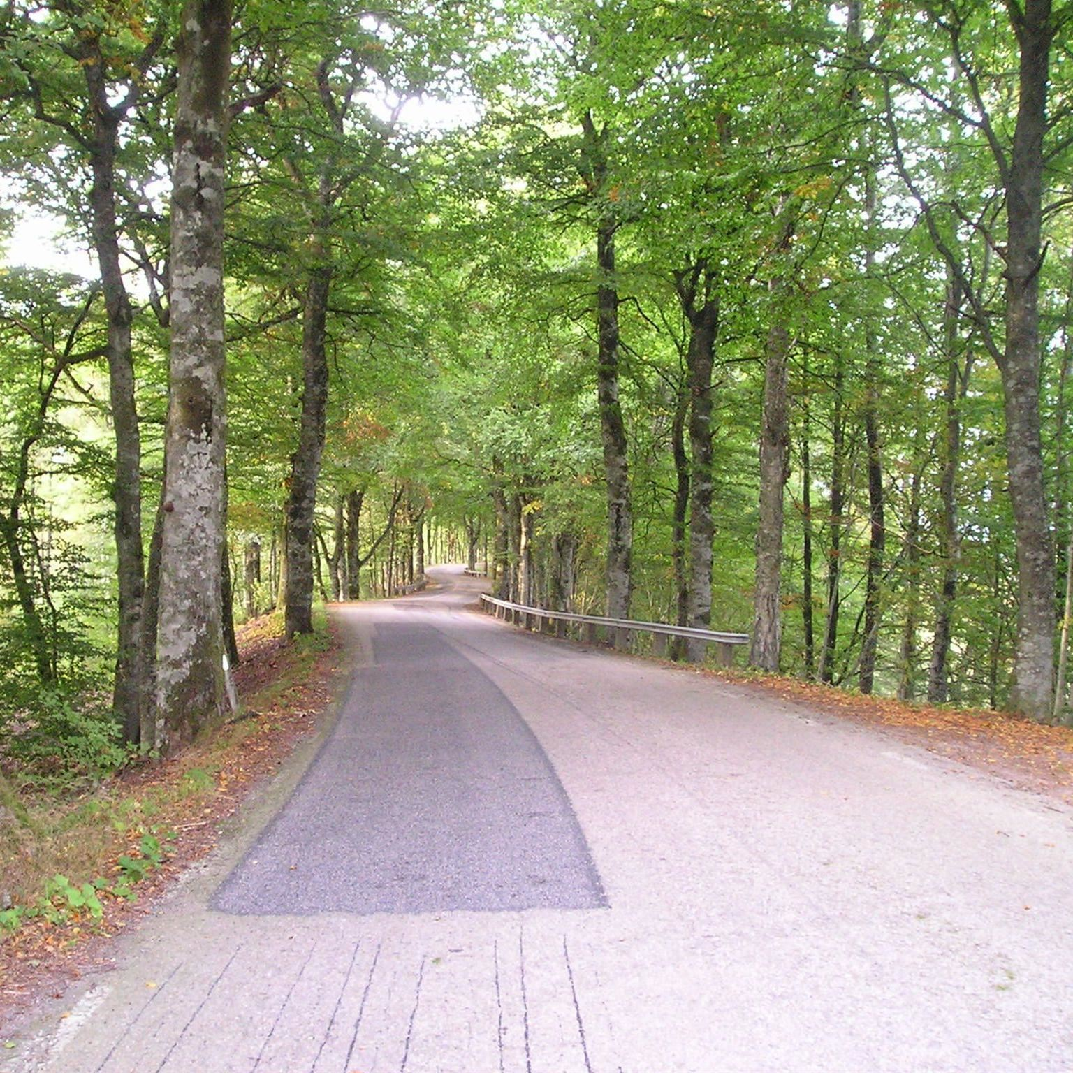 © Värnamo Näringsliv AB , Getaryggarna scenic route