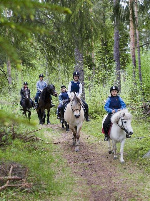 Hobbyhästens lilla runda som turridning, cykling eller vandring