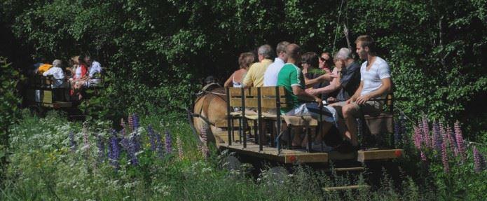 På luffen med hästskjuts