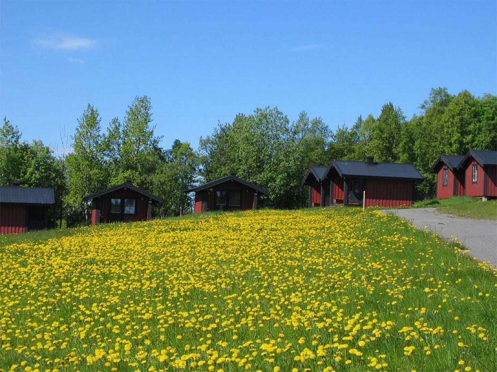 Frösö Camping