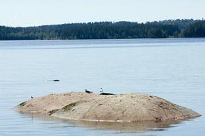 © Smålandsbilder, Kanot-, kajak- och båtuthyrning i Aneby