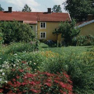 Trädhuset Korpaboet