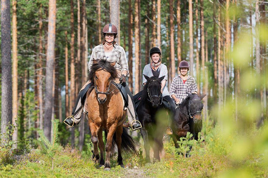 Calle Bredberg,  © Dest Umeåregionen, Horse riding (trekking) on Iceland horses