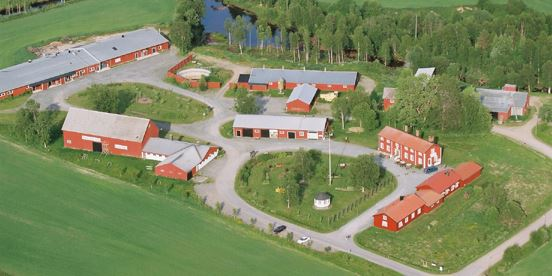 Stenfors Gård (Farmstead gardens) (copy)