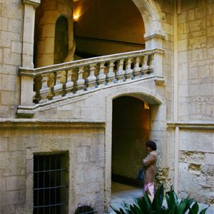 French guided tour - Private mansions