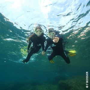 Snorkelling experience