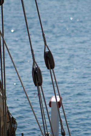 Vieux Port - Rive Sud - le 25/09 Septembre en Mer