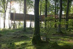 Baumhaus Hovdala - Hovdala trädhus