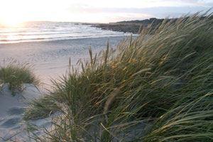 Strandhusen