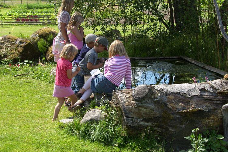 Denningarums gård,  © Denningarums gård, Barn vid damm, Denningarums gård