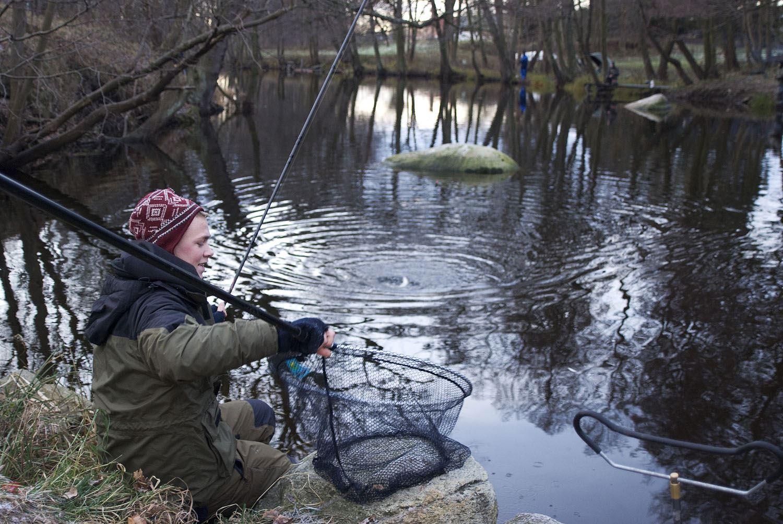 Tobias Delfin, Skräbeån fiske