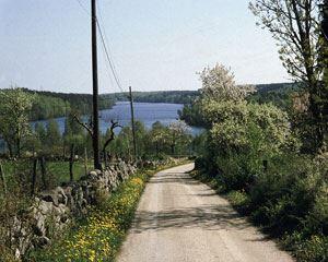 Halen runt 22 km, Olofström